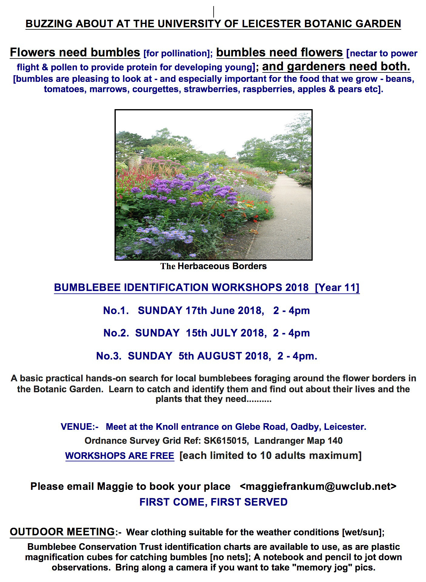 Bumblebee Identification Workshops
