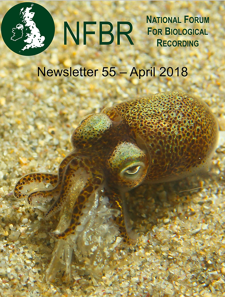 NFBR_Issue_55