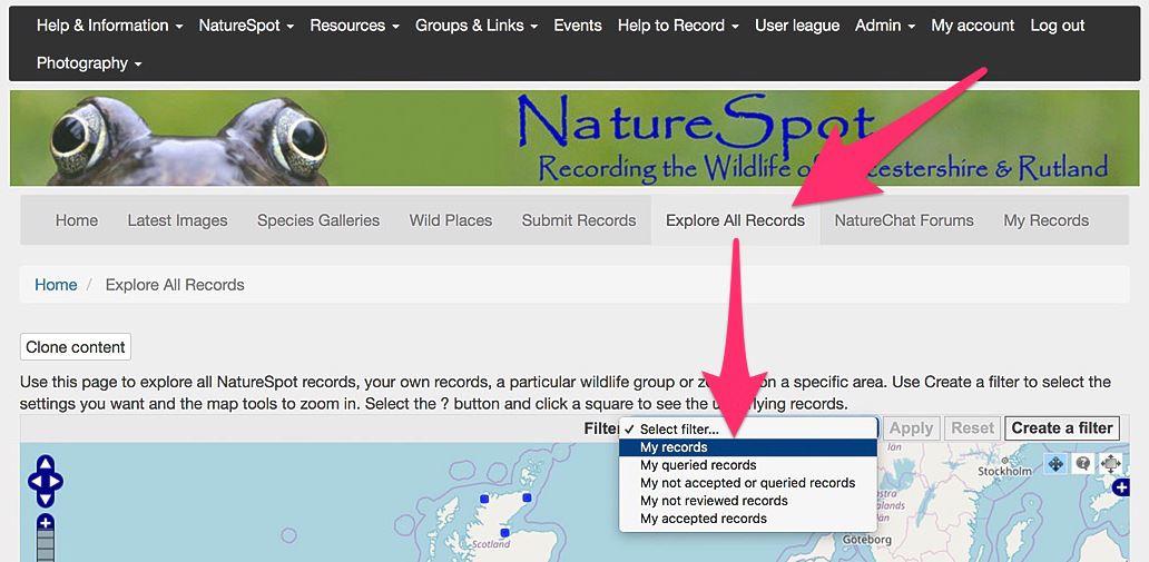 explore page